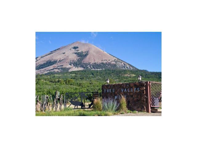 Highway 160, La Veta, CO 81055 (MLS #3123559) :: 8z Real Estate