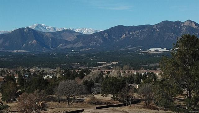 14359 Spyglass Hill Place, Colorado Springs, CO 80921 (#3125432) :: The DeGrood Team