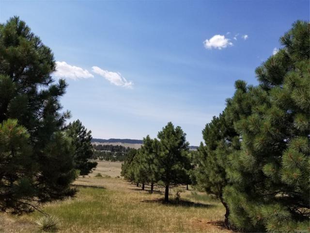 9896 Indian Trail, Peyton, CO 80831 (#3125589) :: The Peak Properties Group