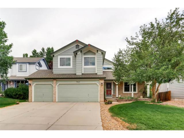 9023 W Coco Drive, Littleton, CO 80128 (MLS #3126012) :: 8z Real Estate