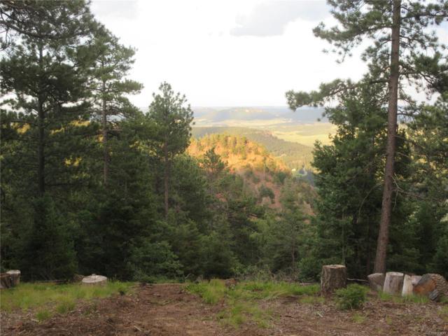 13948 Boulder Lane, Larkspur, CO 80118 (#3126240) :: Compass Colorado Realty