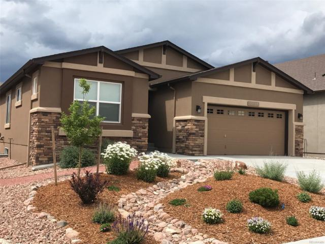 10136 Edgemont Ranch Lane, Colorado Springs, CO 80924 (#3126340) :: The Pete Cook Home Group