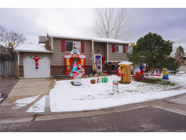 6015 S Garland Way, Littleton, CO 80123 (#3128639) :: Colorado Home Finder Realty