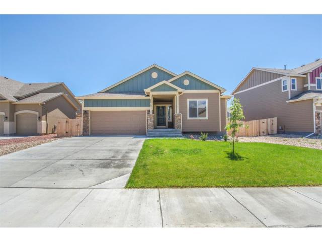6615 Stingray Lane, Colorado Springs, CO 80925 (MLS #3129783) :: 8z Real Estate