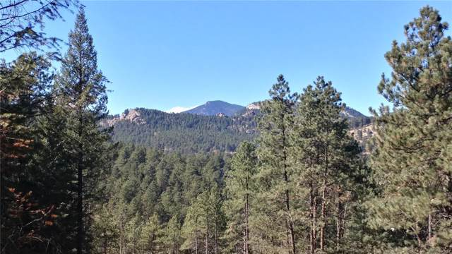 5167 Mountain Vista Lane, Evergreen, CO 80439 (#3135440) :: RazrGroup