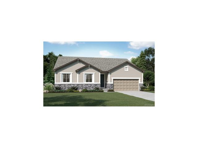 7389 Greenwater Circle, Castle Rock, CO 80108 (MLS #3136236) :: 8z Real Estate