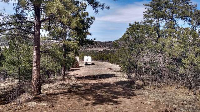 431 Deerstalker Trail, Canon City, CO 81212 (MLS #3136362) :: Stephanie Kolesar