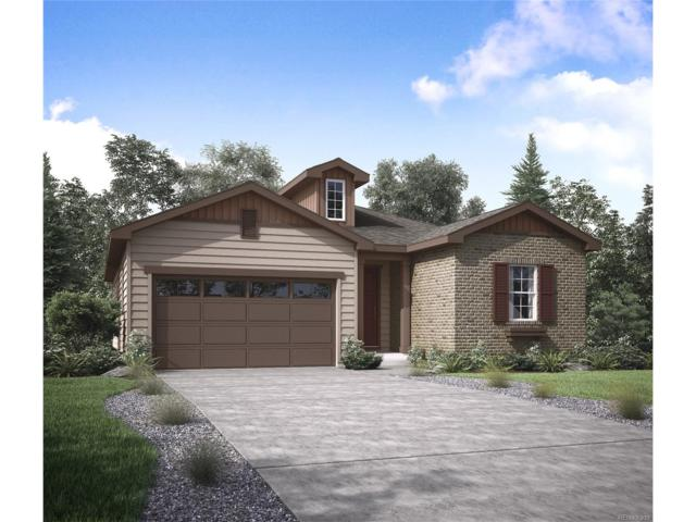 7331 S Shady Grove Way, Aurora, CO 80016 (MLS #3138771) :: 8z Real Estate
