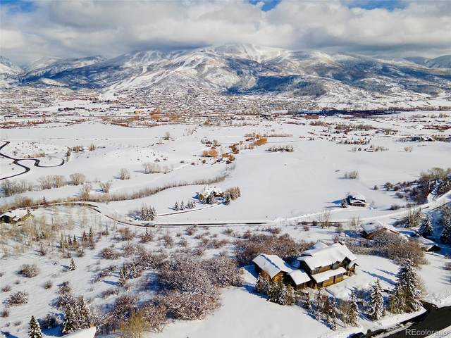 31615 Aspen Ridge Road, Steamboat Springs, CO 80487 (#3143579) :: Re/Max Structure