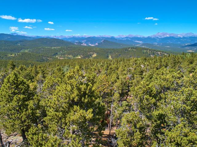 Squirrel Tail Lane, Black Hawk, CO 80422 (MLS #3145540) :: 8z Real Estate