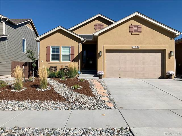 11021 Echo Canyon Drive, Colorado Springs, CO 80908 (#3147735) :: The DeGrood Team
