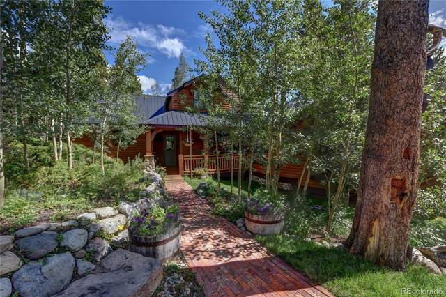 780 Looney Lane, Fairplay, CO 80440 (#3151571) :: The Healey Group