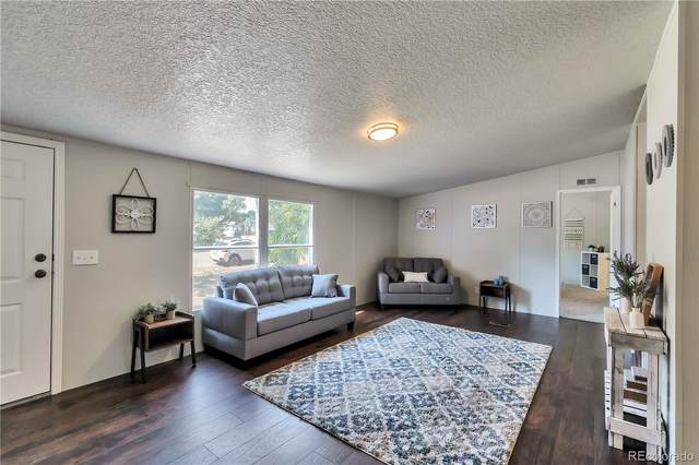 4213 Olympic Drive, Greeley, CO 80634 (#3152154) :: The DeGrood Team