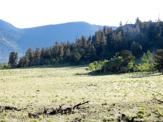 Puma Hills Road, Hartsel, CO 80449 (#3153043) :: Sultan Newman Group