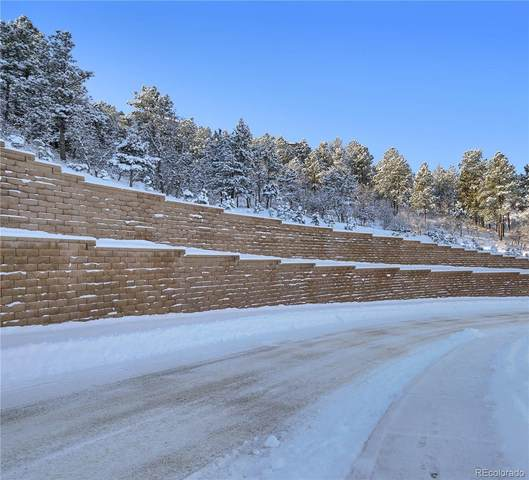2049 Safe Harbor Court, Colorado Springs, CO 80919 (#3155273) :: Sultan Newman Group