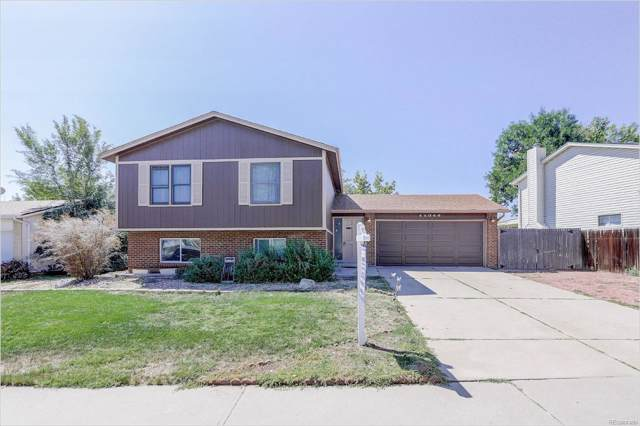11344 Clermont Drive, Thornton, CO 80233 (MLS #3155728) :: 8z Real Estate