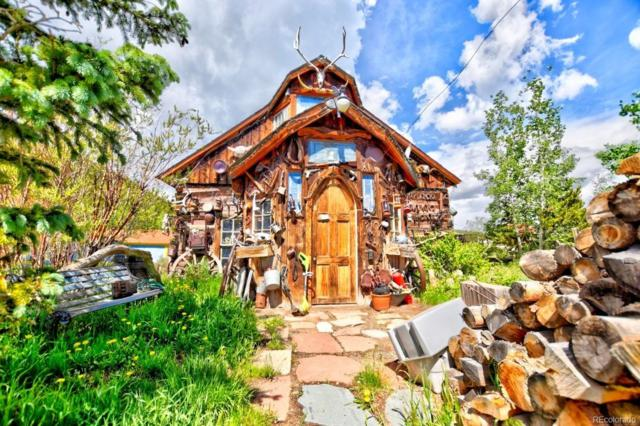 97 Pine Street, Como, CO 80432 (MLS #3157737) :: 8z Real Estate