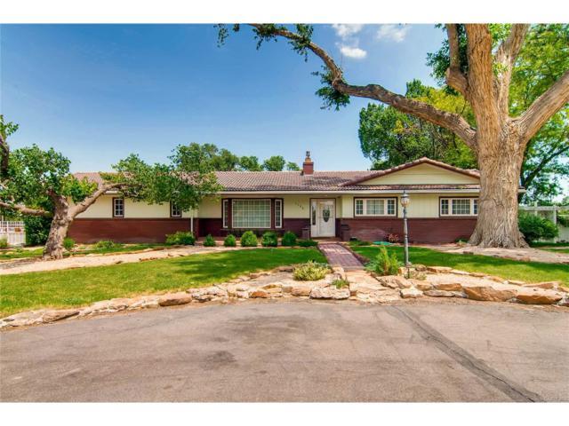 1136 30 1/4 Lane, Pueblo, CO 81006 (MLS #3158726) :: 8z Real Estate