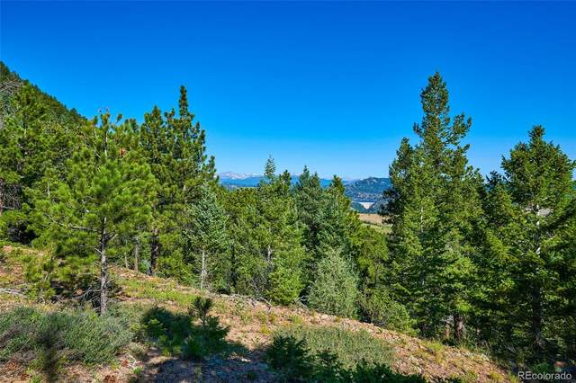 1257/1316 Chute Road, Golden, CO 80403 (#3159302) :: The DeGrood Team