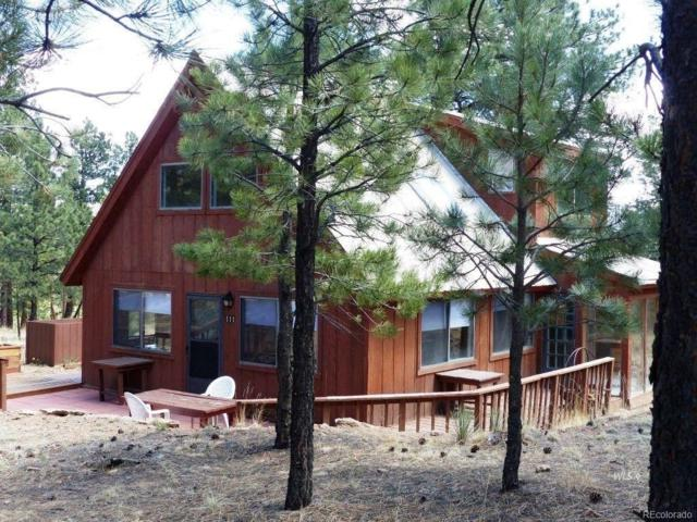 111 Sioux Trail, Westcliffe, CO 81252 (#3160163) :: The Galo Garrido Group