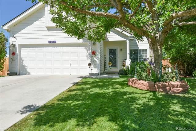 8831 Jackdaw Street, Littleton, CO 80126 (MLS #3161008) :: Neuhaus Real Estate, Inc.
