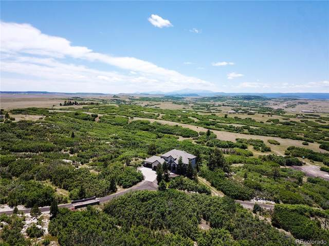 5981 Lake Gulch Road, Castle Rock, CO 80104 (MLS #3163707) :: 8z Real Estate