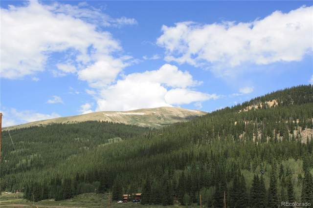 2983 River Drive, Alma, CO 80420 (MLS #3169287) :: Neuhaus Real Estate, Inc.