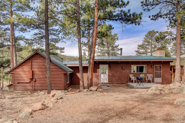 387 Raven Drive, Bailey, CO 80421 (#3169845) :: Bring Home Denver with Keller Williams Downtown Realty LLC