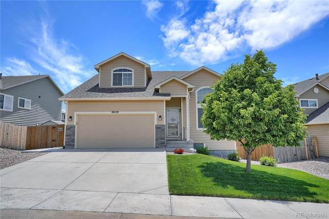 6628 Passing Sky Drive, Colorado Springs, CO 80911 (#3169913) :: The Artisan Group at Keller Williams Premier Realty