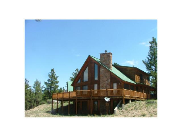 1570 Quanah Road, Westcliffe, CO 81252 (MLS #3171046) :: 8z Real Estate