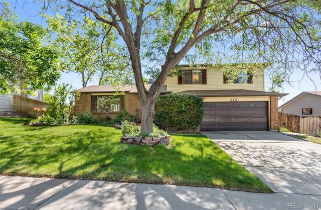 4434 S Devinney Court, Morrison, CO 80465 (#3172343) :: Kimberly Austin Properties