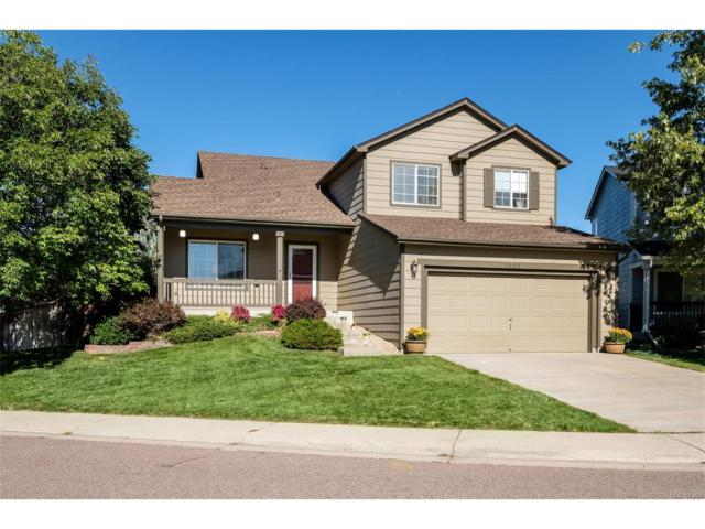 5503 Sydney Place, Highlands Ranch, CO 80130 (#3173243) :: The Sold By Simmons Team