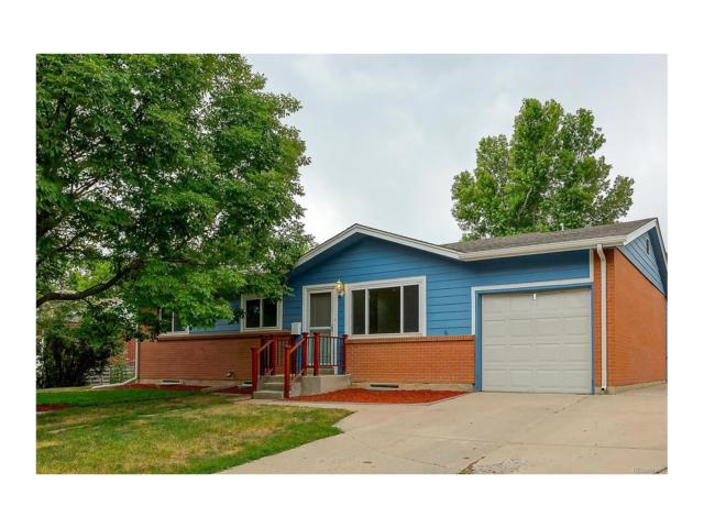6817 Newcombe Street, Arvada, CO 80004 (MLS #3175384) :: 8z Real Estate