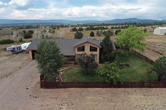28047 Redlands Mesa Road, Hotchkiss, CO 81419 (#3175740) :: Re/Max Structure