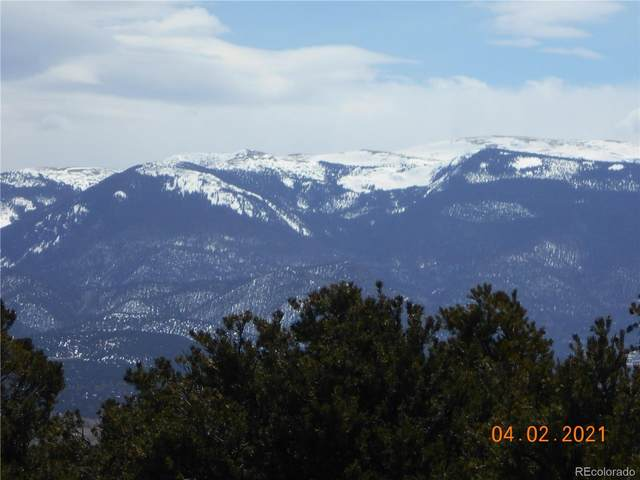 Monte Vista Drive, San Luis, CO 81152 (MLS #3176757) :: Bliss Realty Group