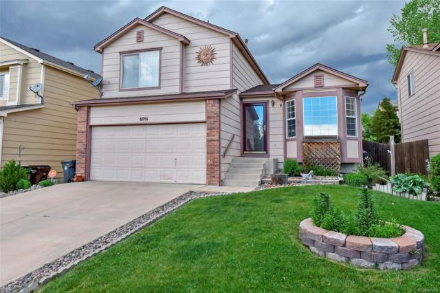 6091 Bow River Drive, Colorado Springs, CO 80923 (#3177791) :: The Heyl Group at Keller Williams