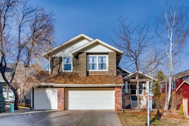 67 Buckthorn Drive, Littleton, CO 80127 (#3177884) :: Mile High Luxury Real Estate