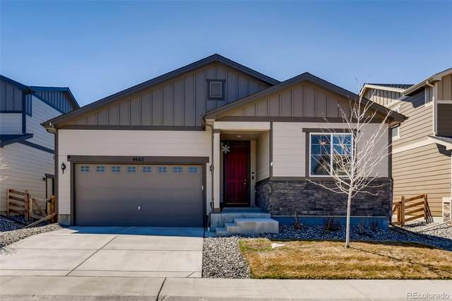 4665 S Odessa Street, Aurora, CO 80015 (MLS #3179226) :: Kittle Real Estate