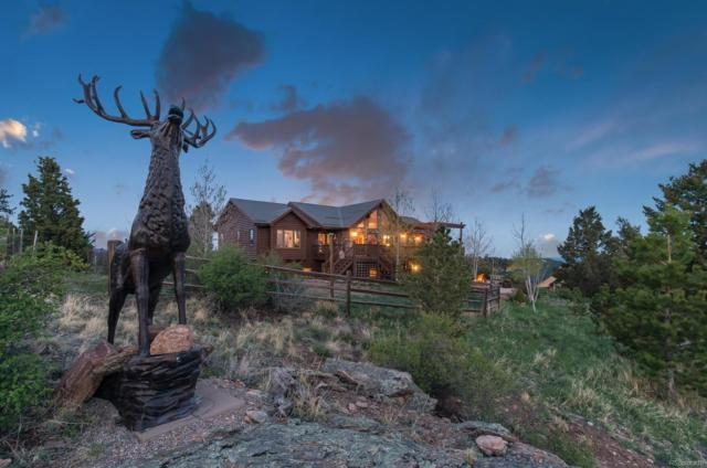 189 Park Avenue, Pine, CO 80470 (MLS #3181034) :: Bliss Realty Group
