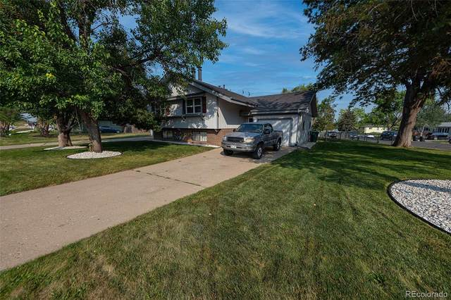 8860 Lipan Street, Thornton, CO 80260 (MLS #3182421) :: Find Colorado