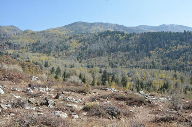 2815 Heavenly View, Steamboat Springs, CO 80487 (#3184033) :: The Healey Group
