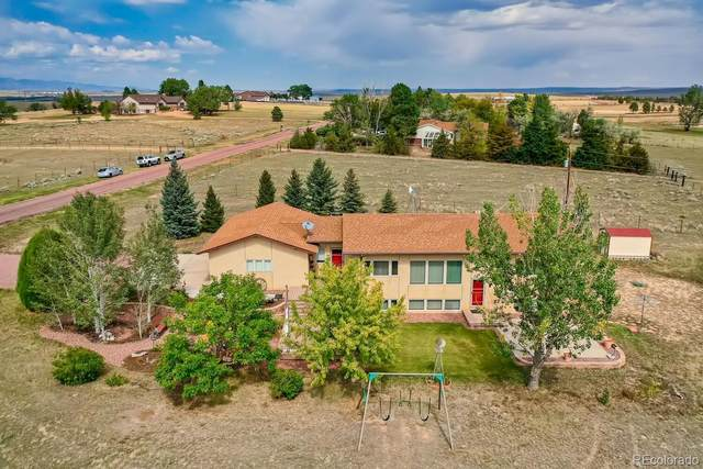 7345 Raintree Drive, Colorado Springs, CO 80925 (#3184905) :: Real Estate Professionals