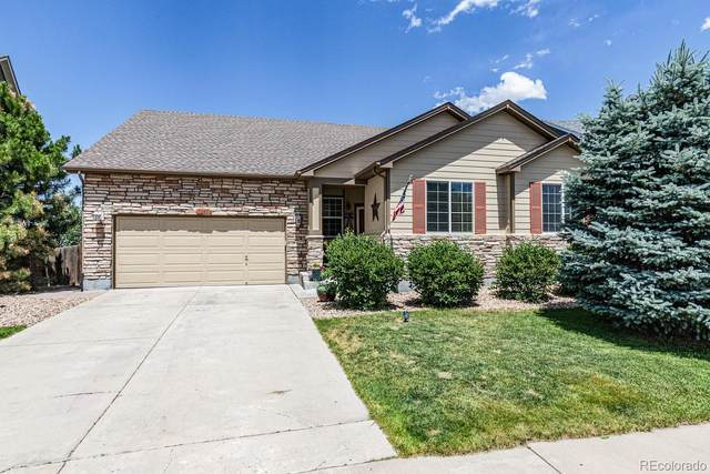3445 Softwind Point, Castle Rock, CO 80108 (#3185066) :: The HomeSmiths Team - Keller Williams