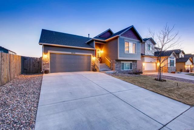 6059 Dancing Sun Way, Colorado Springs, CO 80911 (#3185212) :: Briggs American Properties