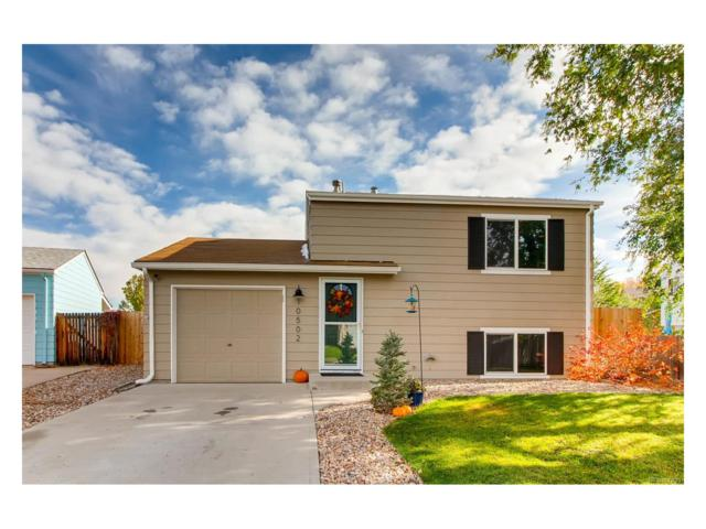 10502 Kline Way, Westminster, CO 80021 (#3185651) :: Ford and Associates