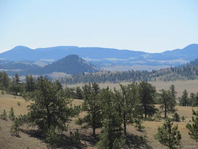 Running Bear, Hartsel, CO 80449 (#3186007) :: Kimberly Austin Properties