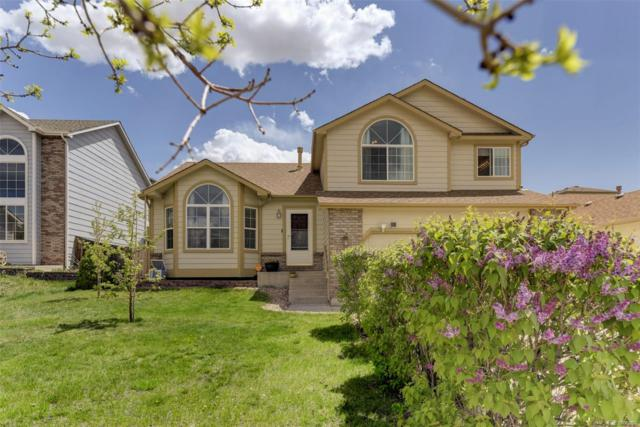 7755 Chancellor Drive, Colorado Springs, CO 80920 (#3187060) :: Venterra Real Estate LLC