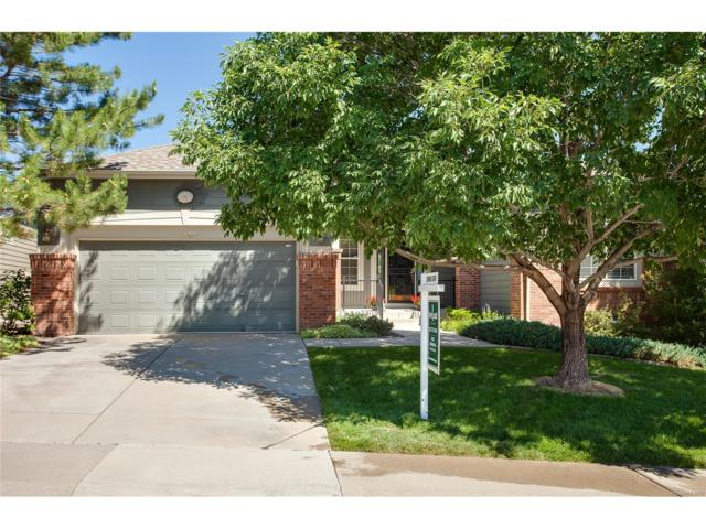 1049 Deer Clover Way, Castle Pines, CO 80108 (#3188966) :: The Sold By Simmons Team