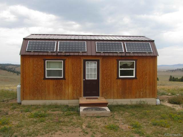 1120 Guipago Trail, Hartsel, CO 80449 (MLS #3192987) :: Bliss Realty Group