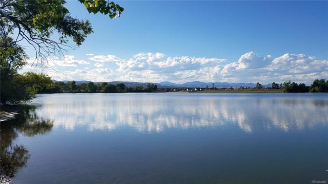6255 W Lakeridge Road, Lakewood, CO 80227 (#3194089) :: 5281 Exclusive Homes Realty